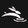 Rabbit Laser USA logo