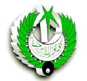 Radio logo icon
