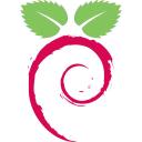 Raspbian logo icon