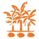 Powered By Reef To Rainforest Media logo icon