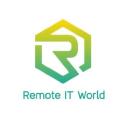 Remote IT World Company Profile
