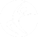 Rheumatology Specialists of Connecticut logo