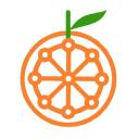 Ripe logo icon