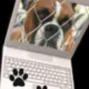 RoadDog Computers, LLC Logo