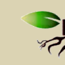 Roots Chat logo icon