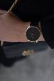 Sachii Watches Logo