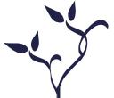 Sahava Inc logo
