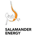 Salamander Energy (Indonesia) Limited logo