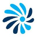 Salient CRGT Company Logo
