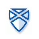 Saltire Software logo