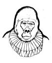 Salty Shakespeare, LLC logo