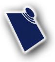 Sapindigo Solutions Brasil logo