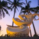 Sareeraya Villas & Suites logo
