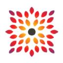 Sarwar Consults LLC logo