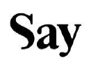 Say - Brand strategy & Expression logo