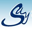 Say Cargo Express logo