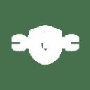 Schaumburg Automedics Inc. logo