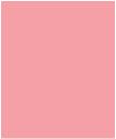 Scintilla logo