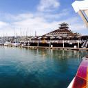 San Diego Yacht Club logo