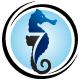 Seahorse Coaching L.L.C. logo