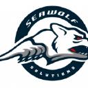 Seawolf Solutions Inc logo