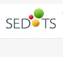 SEDOTS Info Technologies P Ltd logo