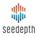 SeeDepth logo