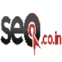 SEO.co.in logo