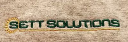 SETT Solutions, Inc. logo