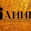 iAMMI LLC logo