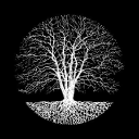 Silent Season Recordings logo