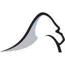 Silverback Strategies Inc logo
