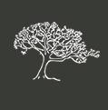 Silver Maple Construction logo