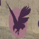 Smart Dubai logo icon