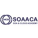 SOAACA MCS logo
