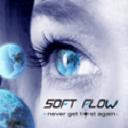 Soft Flow Group on Elioplus