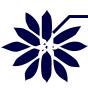 SOLUTT Corporation logo