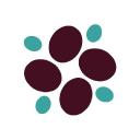 Sonoma Biotherapeutics Stock