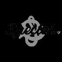 Stuart Spector Designs LTD logo