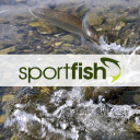 Sportfish logo icon
