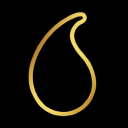 Sports Research logo icon