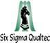 Six Sigma Qualtec Inc