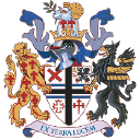 Sthelens logo icon