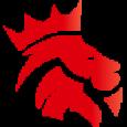 Yankee Kicks Store Logo