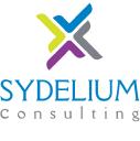 SYDELIUM Consulting logo