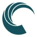 Synnex logo icon