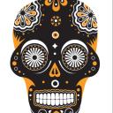 Tacomio logo icon