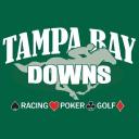 Tampa Bay Downs logo icon