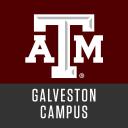 Texas A&M University At Galveston logo icon