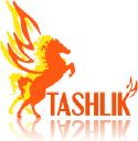 Tashlik Studio logo icon